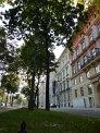 447. Platz | Halbmarathon | Cosima L. (565) | Die Wiener Ringstraße
