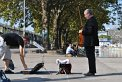 159. Place | Halbmarathon | Schoko Schirmchen (571) | am Donaukanal