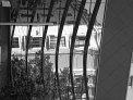 66. Place | Jugendbewerb | Era F. (631) | alles Glas