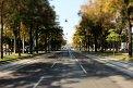 395. Place | Halbmarathon | Sophie D. (638) | Die Wiener Ringstraße