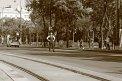 46. Platz | Marathon | Tamara Maria C. (65) | Die Wiener Ringstraße