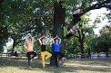 13. Platz | Marathon | Solid Click (669) | Baum-Bäume