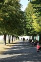 133. Platz | Marathon | Thomas M. (673) | Baum-Bäume