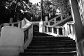 459. Place | Halbmarathon | Christoph D. (690) | Stiegen-Stufen-Treppen