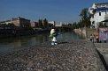 18. Place | Jugendbewerb | Emma D. (691) | am Donaukanal