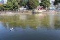 317. Place | Halbmarathon | Gabriel L. (695) | am Donaukanal