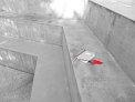 286. Place | Halbmarathon | Su@pe (702) | Stiegen-Stufen-Treppen