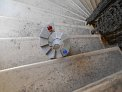 55. Platz | Jugendbewerb | Luisa G. (703) | Stiegen-Stufen-Treppen