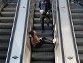 238. Platz | Halbmarathon | Quadro Fromaggis und ein Leon (704) | Stiegen-Stufen-Treppen