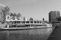 221. Place | Halbmarathon | Lukas Z. (721) | am Donaukanal