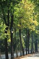 104. Platz | Marathon | Wolfgang B. (73) | Baum-Bäume