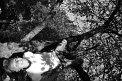 39. Place | Marathon | Kristina P. (732) | Baum-Bäume