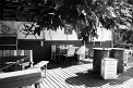 190. Place | Halbmarathon | Anne-Kathrin K. (735) | am Donaukanal