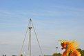 238. Platz | Halbmarathon | Almir K. (736) | Abenteuer Stadt
