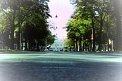 210. Place | Halbmarathon | Markus P. (75) | Die Wiener Ringstraße