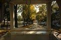 210. Place | Halbmarathon | La Cha (786) | alles Glas