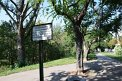 365. Place | Halbmarathon | Sofie P. (791) | am Donaukanal