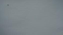 215. Place | Einzel | Stephan L. (1073) | huge-tiny