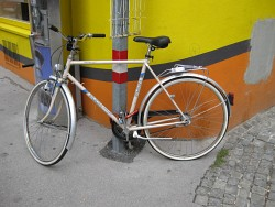 81. Place | Einzel | Bonni (1094) | metal