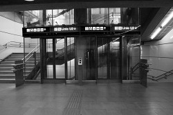 13. Place - rodo (11)