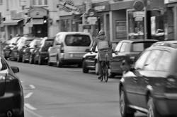 80. Place - Die Sprutzels (220)