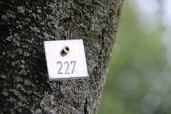 272. Platz - MK-Fotos (227)