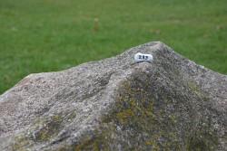 48. Place | Jugend | Johanna Scherbaum (233) | huge-tiny