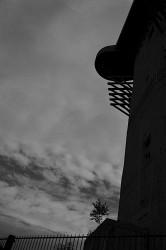 121. Place | Einzel | Theodora H. (282) | huge-tiny