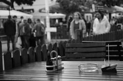 121. Platz | Einzel | Theodora H. (282) | Essen in Wien
