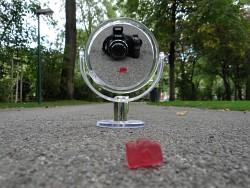 110. Platz | Kreativ | Annuschka's Burgunda (319) | riesig-winzig