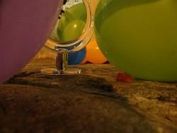 110. Platz | Kreativ | Annuschka's Burgunda (319) | I AM CELEBRATING