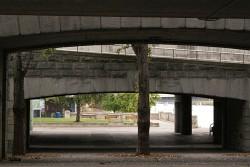 292. Place | Einzel | Gerhard K. (331) | down through
