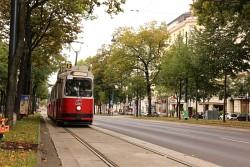 44. Place - Franz G. (366)