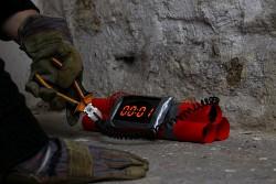 9. Place - Captain Zoom und die Schnappschussschildkröten (369)