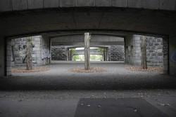 197. Place | Einzel | Gerald W. (38) | down through