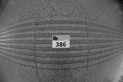81. Place - Thomas S. (386)