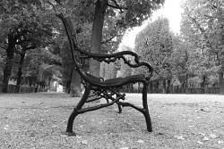 44. Place - Florian S. (387)
