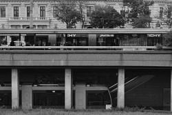 179. Place | Einzel | Sascha K. (404) | down through