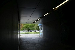 292. Place | Einzel | Tobias W. (478) | down through