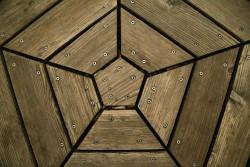 68. Place | Einzel | Elisabeth K. (491) | in the center