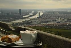 68. Place | Einzel | Elisabeth K. (491) | Eat in Vienna