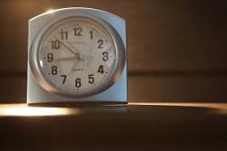 239. Place | Einzel | Branko B. (521) | Time is running...
