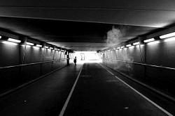 17. Place | Einzel | Markus P. (6) | down through