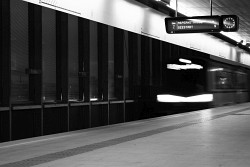 109. Place | Einzel | Isabella G. (663) | fast-slow