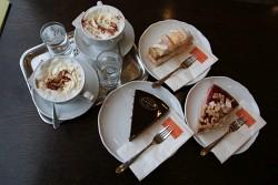 121. Place | Einzel | Karl H. (681) | Eat in Vienna
