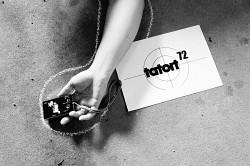 272. Place - Ocelot (72)