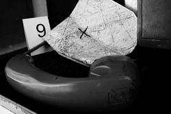 272. Place | Einzel | Ocelot (72) | marked