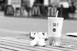 309. Place | Einzel | Erwin P. (84) | Eat in Vienna