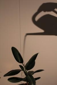78. Platz | Einzel | Bogumila O. (135) | Licht und Schatten
