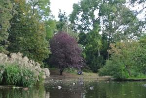 10. Place | Jugend | Ann-Kathrin V. (175) | in the Stadtpark
